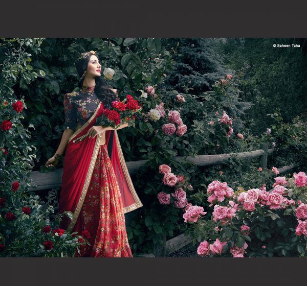 Fashion Photography - Shaheen Taha