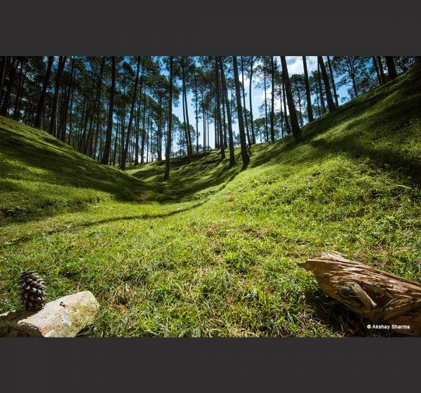 Travel & Nature Photography - Akshay Sharma